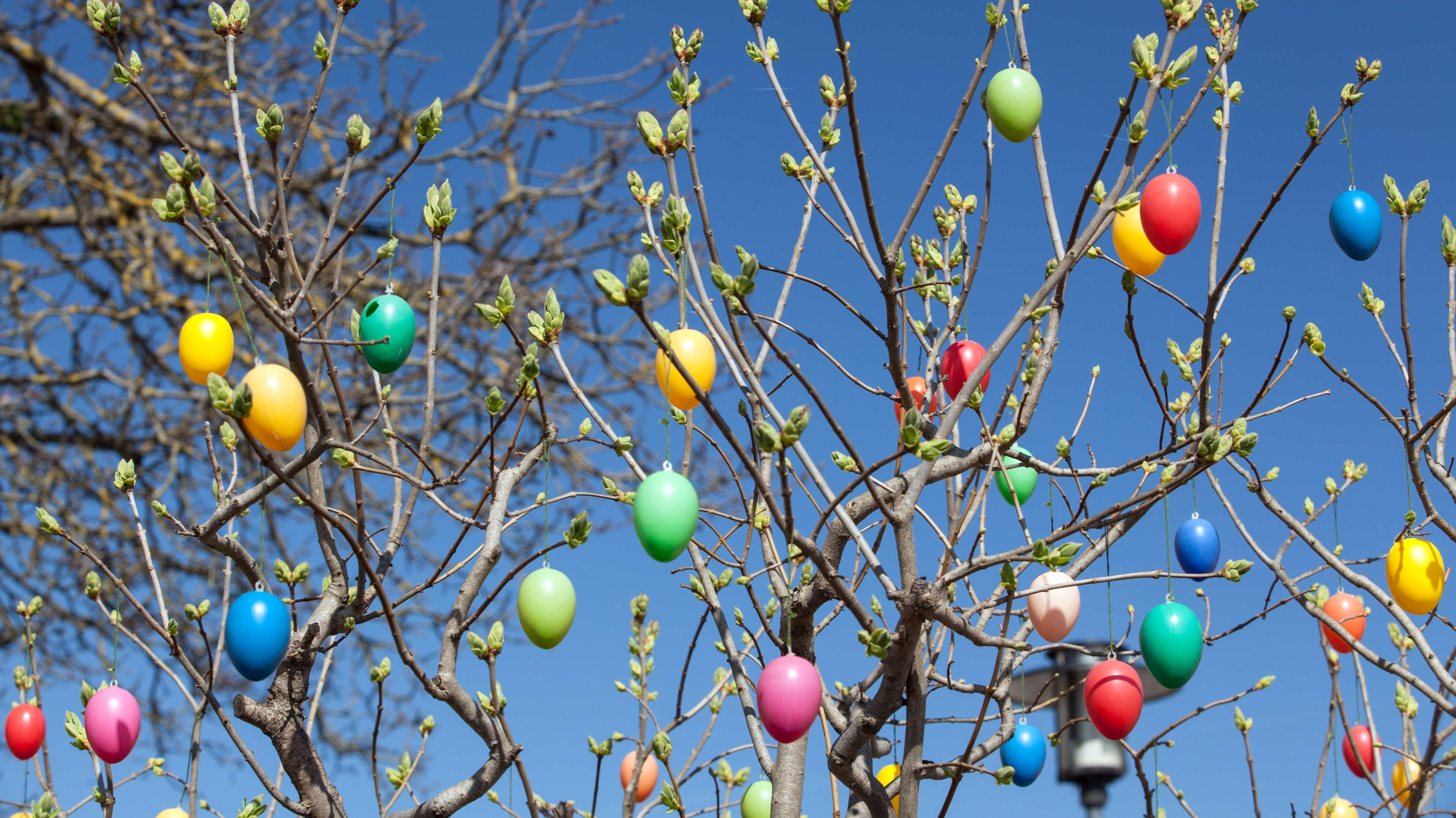 Bunte Deko-Ostereier hängen an einem Busch.