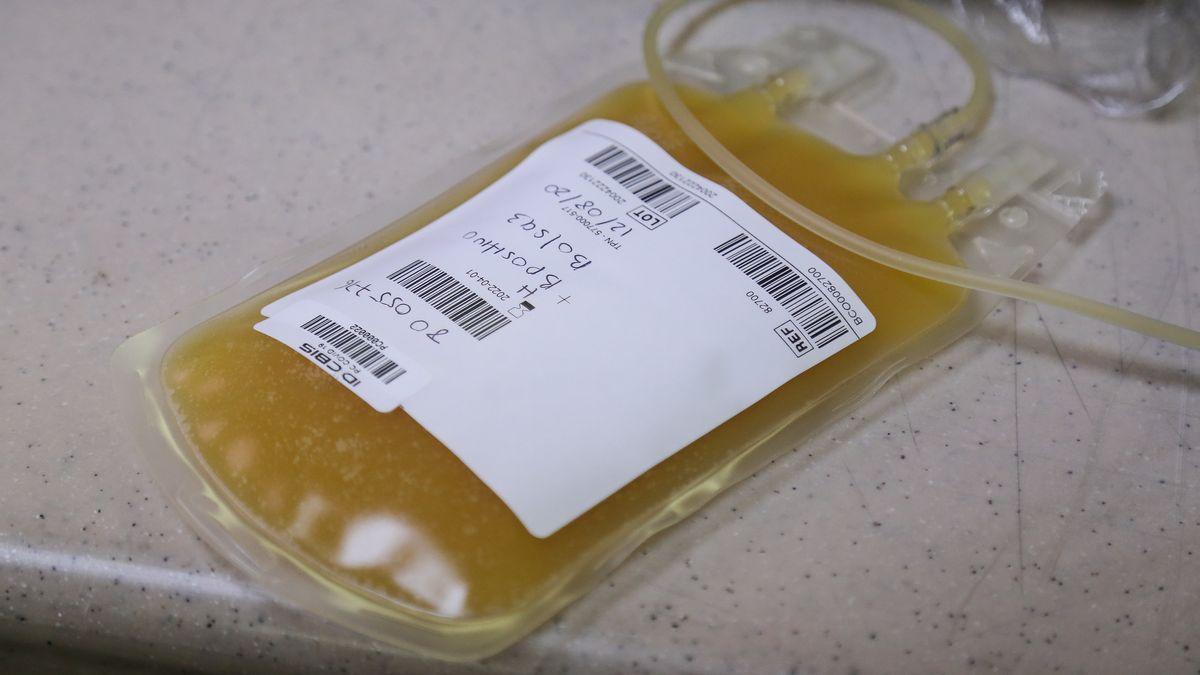 Blutplasma eines geheilten Coronavirus-Patienten in einem Beutel im Bezirksinstitut für Wissenschaft, Biotechnologie und Innovation in der Medizin (IDCBIS) in Bogota (Archivbild).