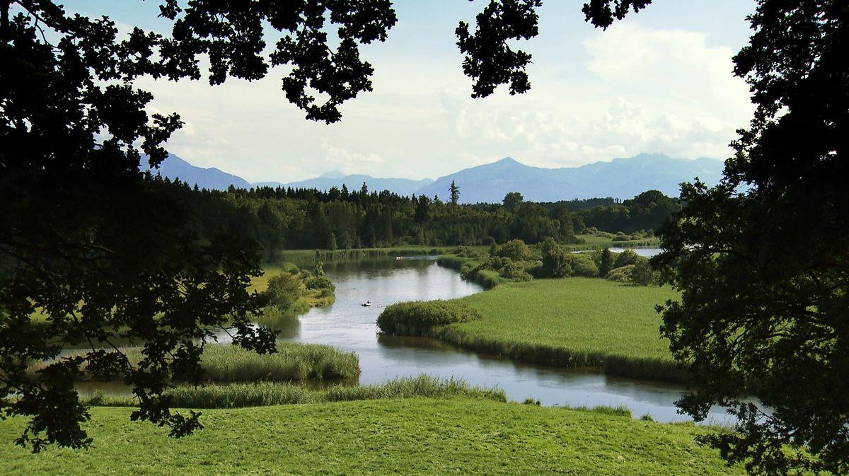 Flusslandschaft an der Alz.