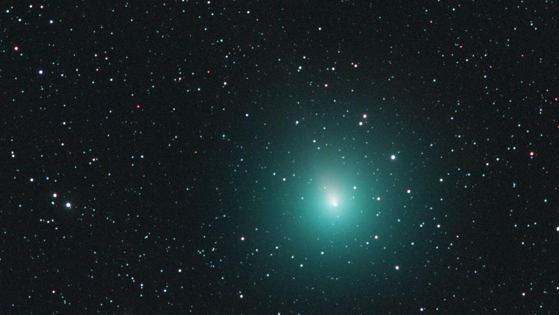 Komet 46P/Wirtanen am 30. November 2018, fotografiert von Michael Jäger