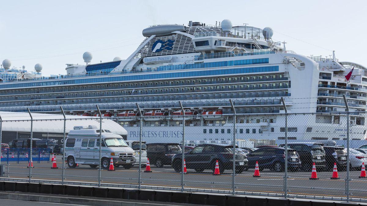 """Das Kreuzfahrtschiff """"Diamond Princess"""" liegt im Hafen."""