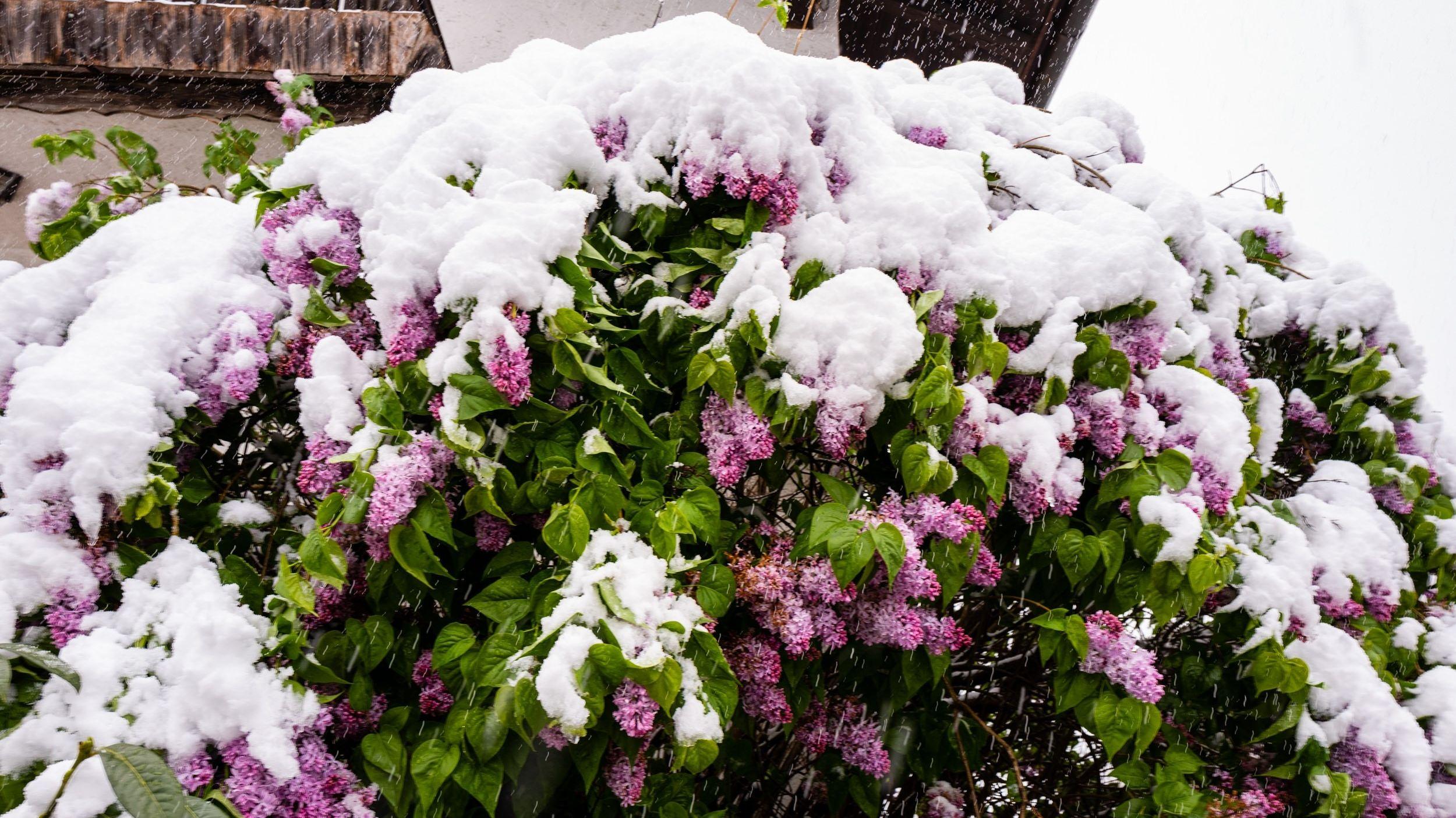 Wintereinbruch im Chiemgau