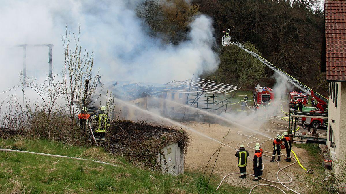In Waldreichenbach hat am Wochenende ein Stall gebrannt. Verletzt wurde niemand, der Sachschaden ist immens.