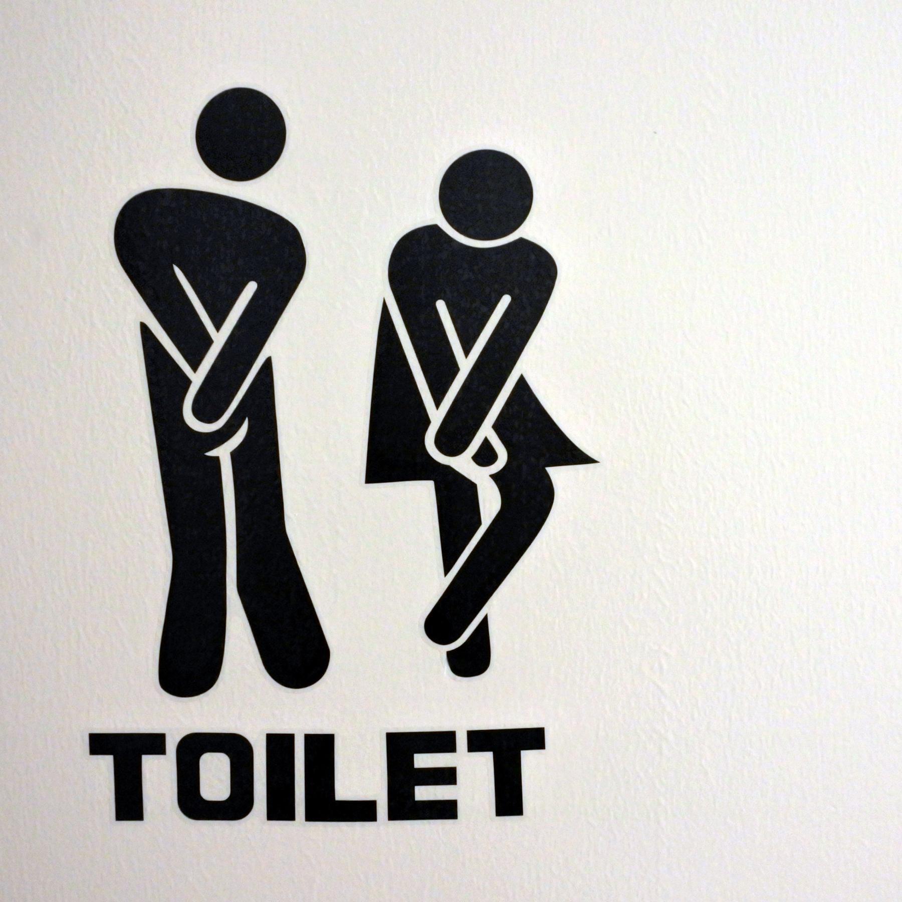 Kulturgeschichte der Toilette - Von der Latrine zum Washlet