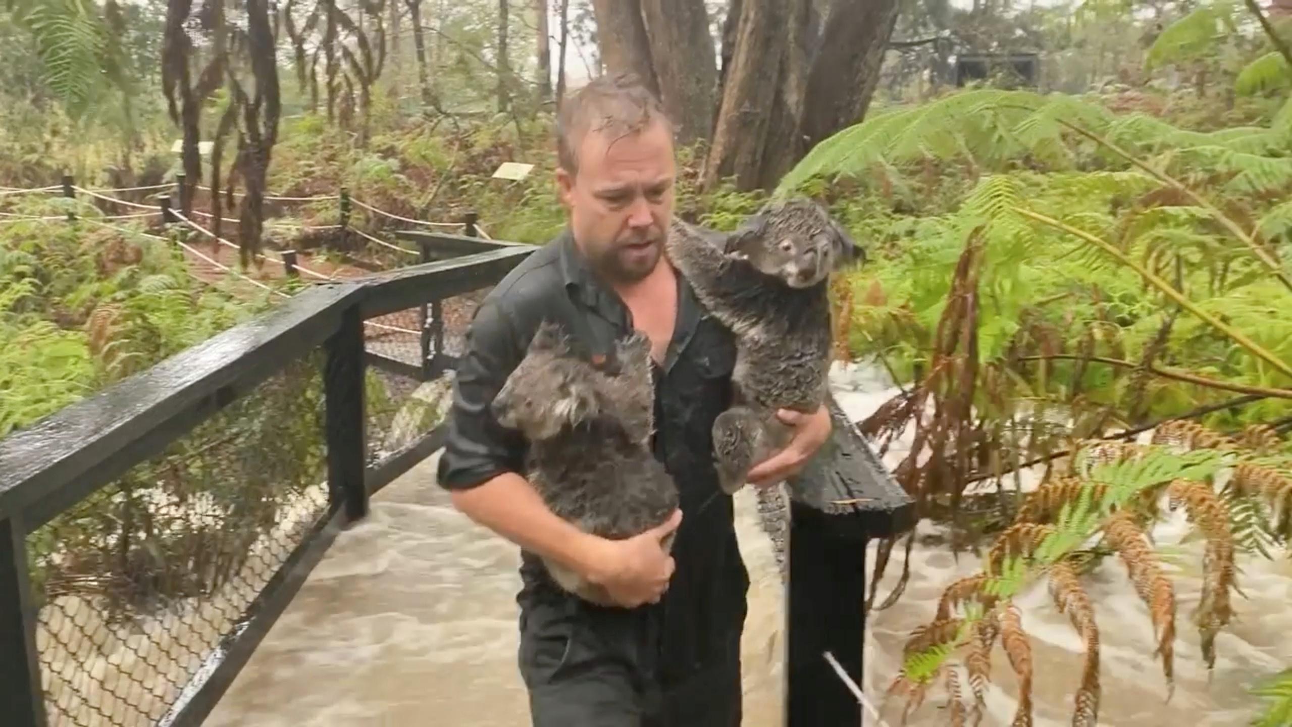 Endlich Regen: Erleichterung für Feuerwehrleute in Australien