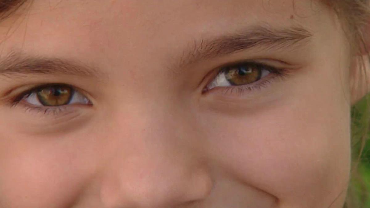 Unsere Sinne (1): Das Auge | Biologie | alpha Lernen | BR.de