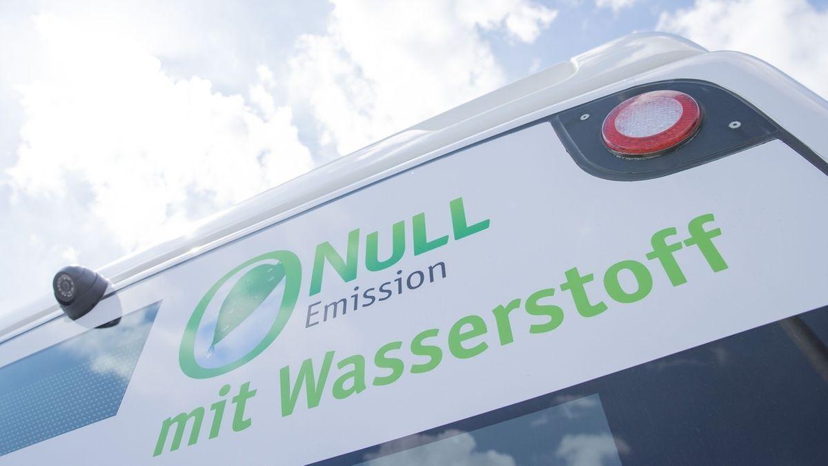 """""""Null Emission mit Wasserstoff"""" steht auf einem Bus."""