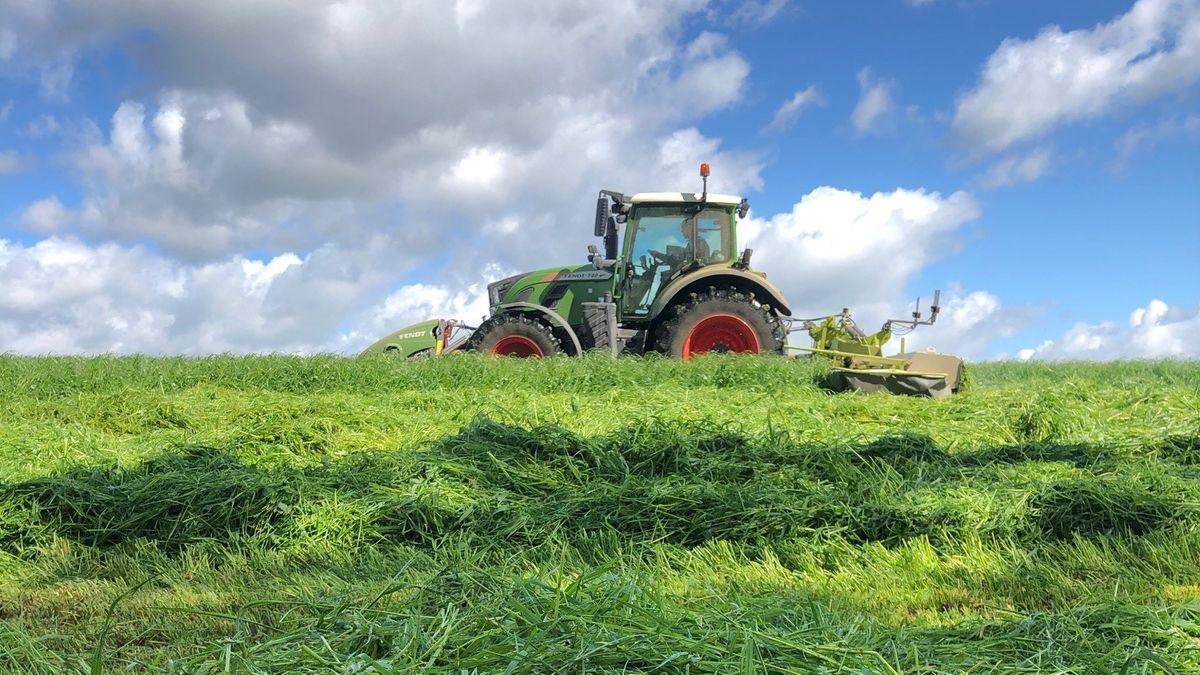 Dank der Drohnen-Technik können die Landwirte sicher mähen.