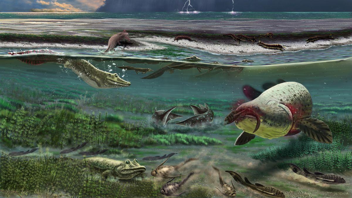 Frühe Tetrapoden unter Wasser und am Strand (künstlerische Darstellung