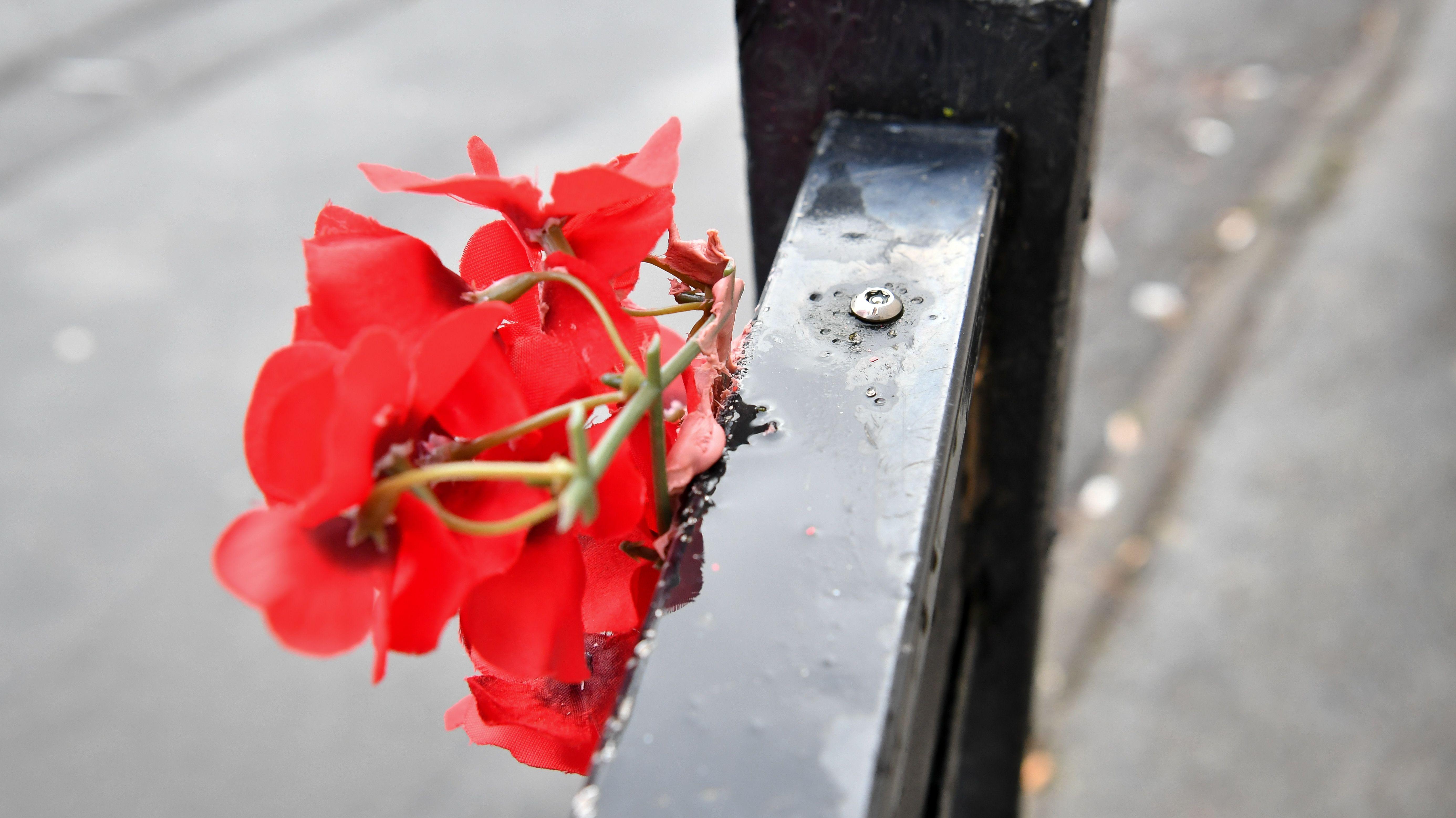 Die Plastikblume ist an einem Schild vor Banksys Street-Art-Werk befestigt.