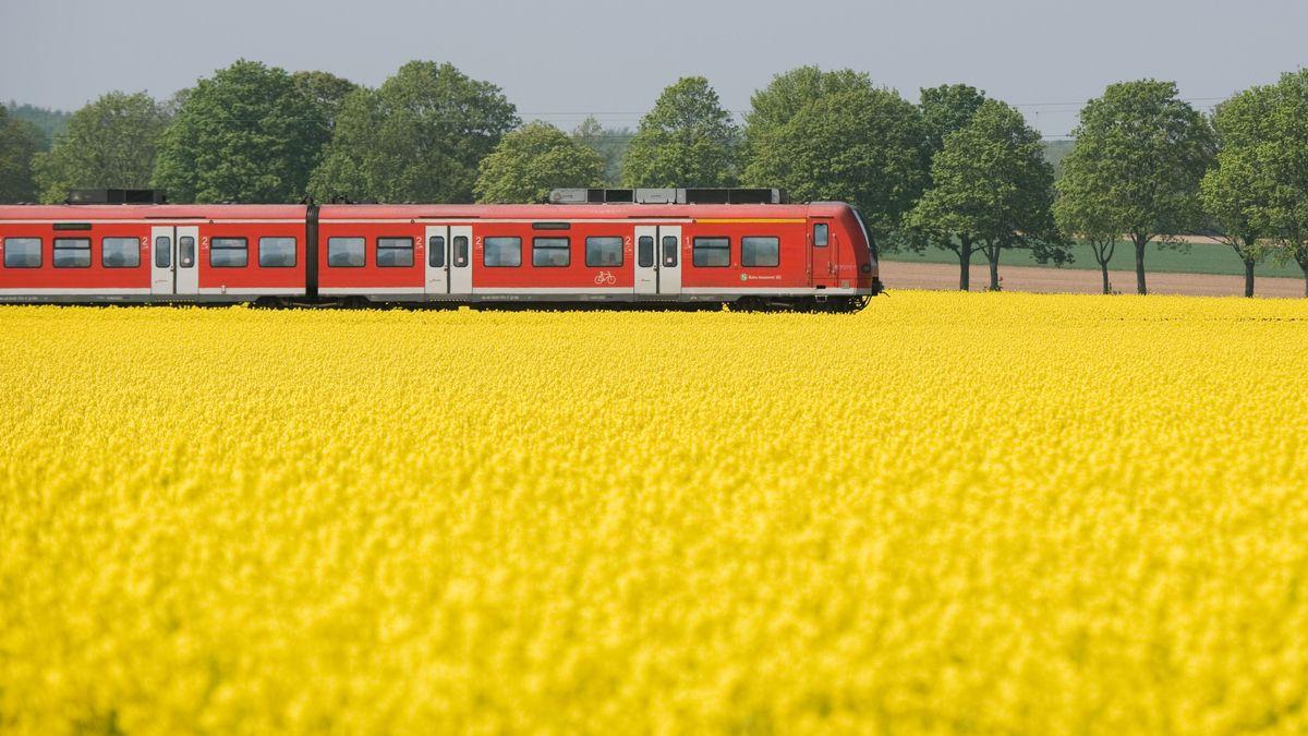 Der Großraum Regensburg soll eine Regio-S-Bahn bekommen