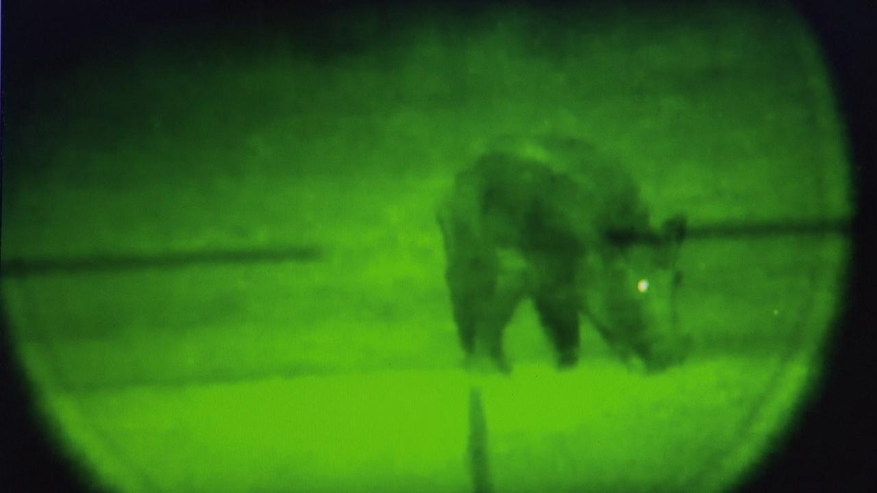Umstrittene jagdtechnik nachtsichtgeräte für die wildschweinjagd