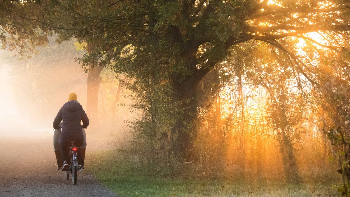 Eine Frau fährt mit einem Fahrrad. Die aufgehende Sonne taucht Nebelschwaden in warmes Licht.