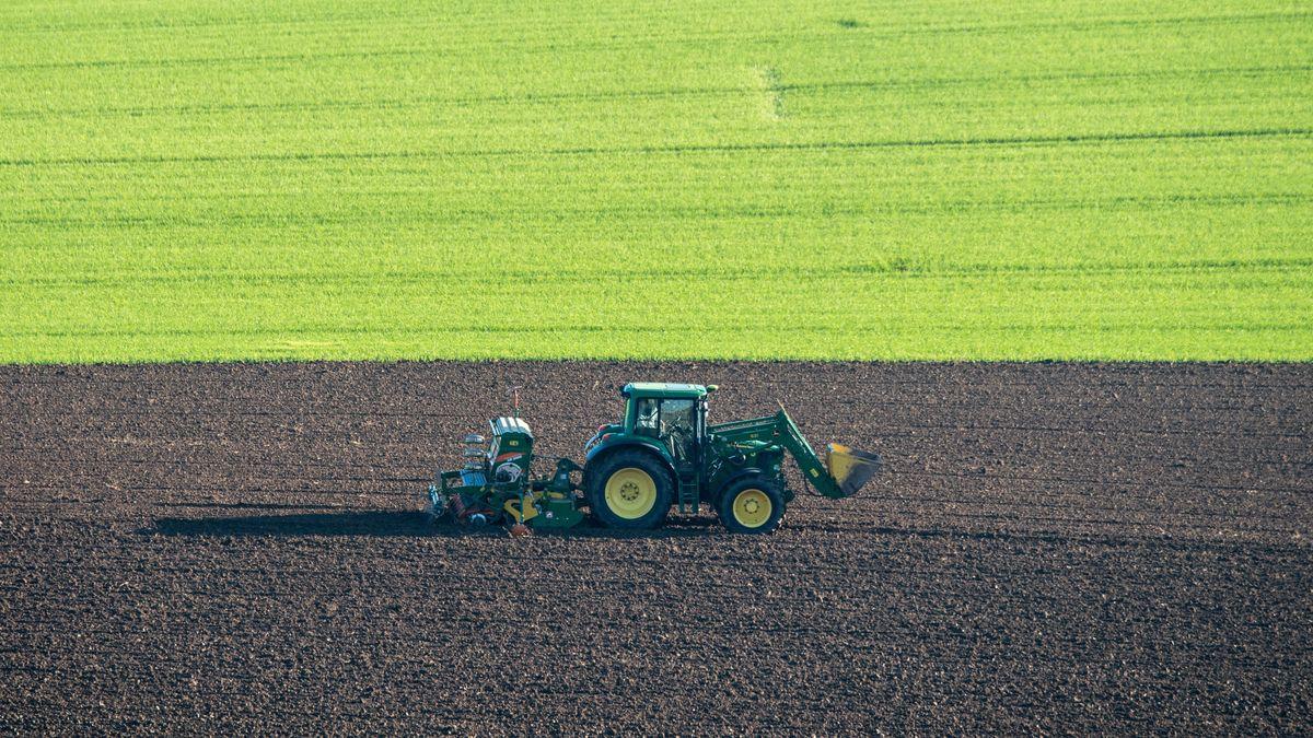 Traktor auf dem Feld. (Symbolbild)