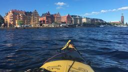 Mit dem Kajak durch Stockholm | Bild:BR/Petra Martin