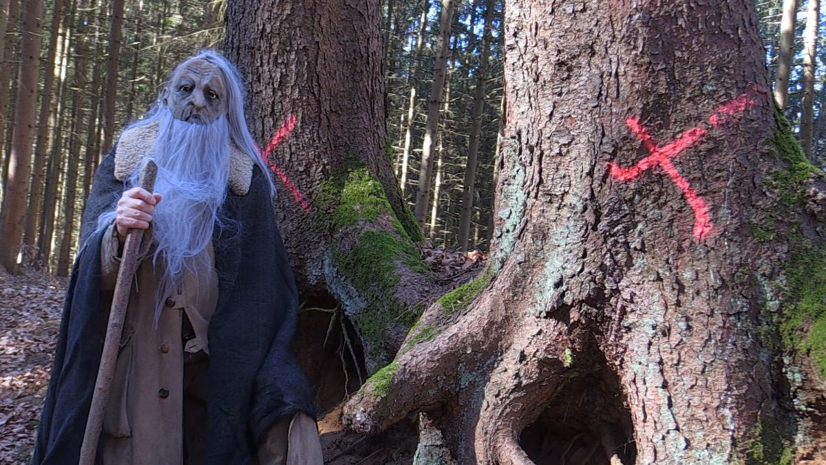 Ein Mann in einem Kostüm steht neben rot markierten Bäumen.