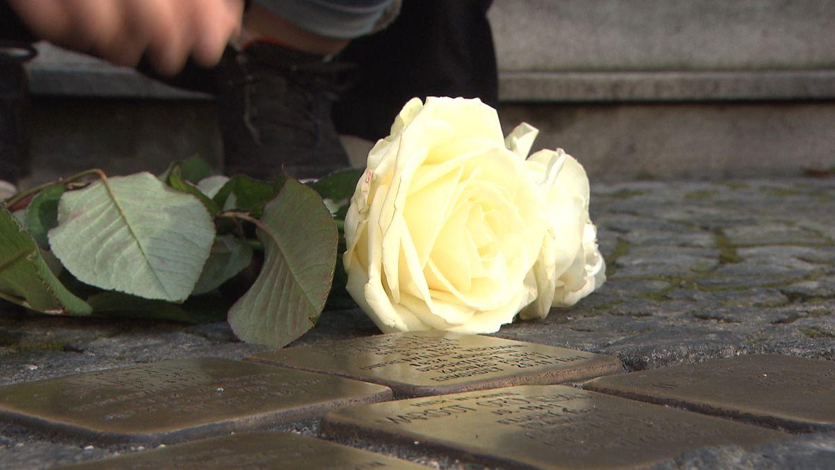 Neben Stolpersteinen liegt eine gelben Rose.
