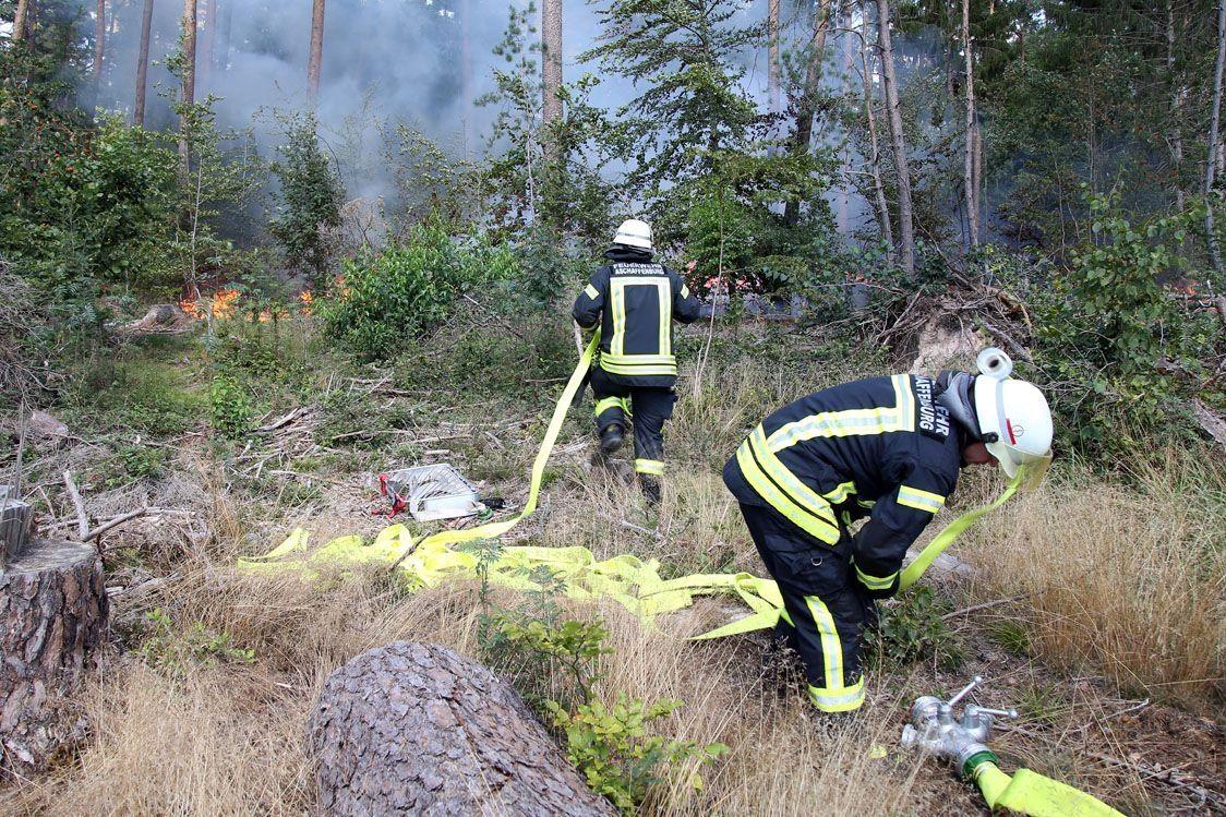 Mehr als 1.000 Quadratmeter Waldboden in Flammen