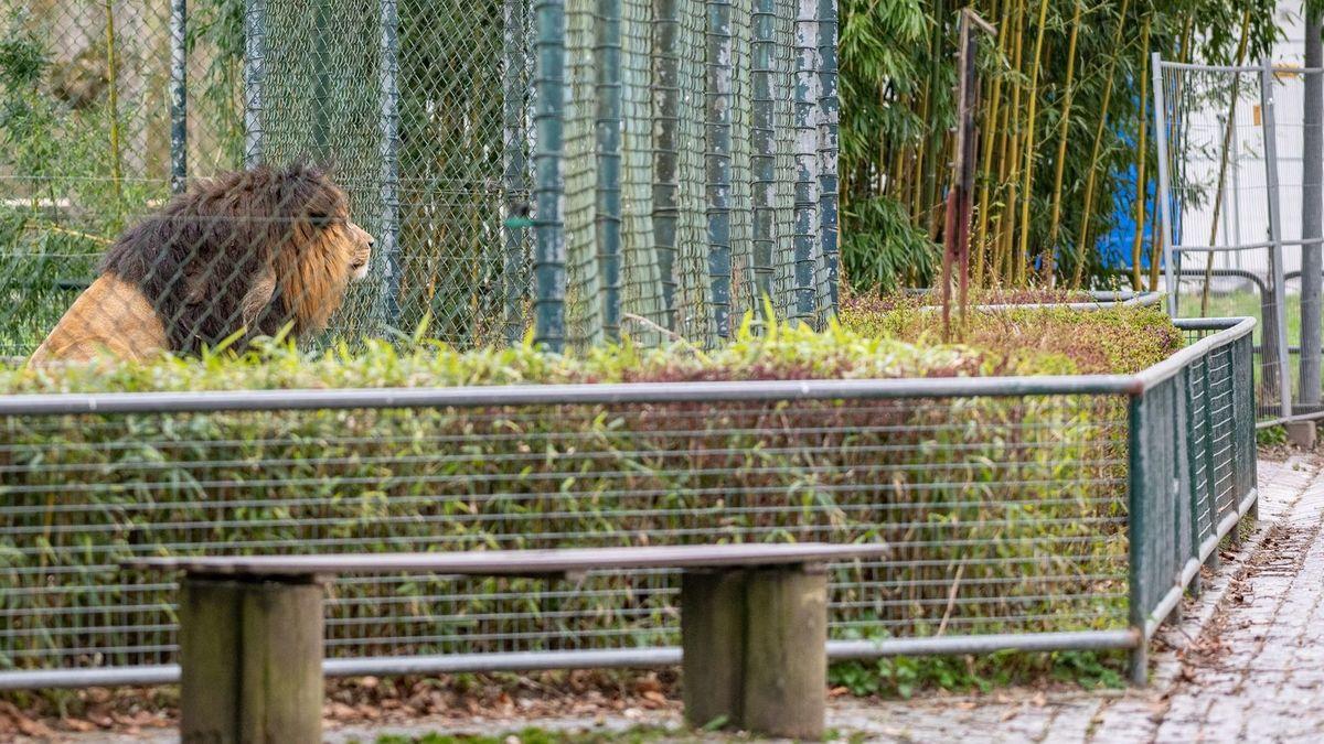 Der Tiergarten Straubing (Symbolbild)