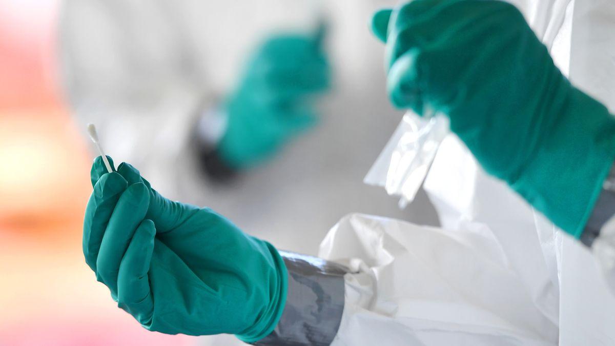 Ein Wattestäbchen - ein Teil eines PCR-Tests