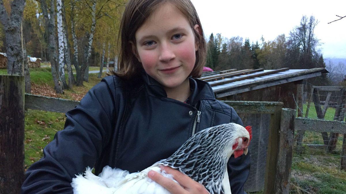 Elisabeths große Leidenschaft: ihre Hühner der Rasse Sussex