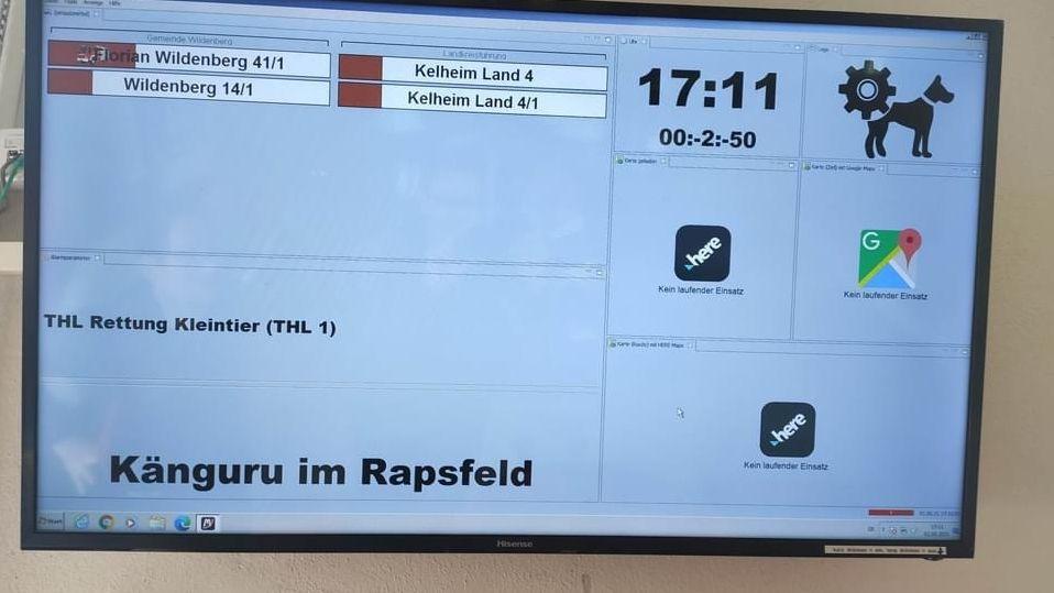 """So einen Einsatz hat man nicht alle Tage - """"Känguru im Rapsfeld""""."""