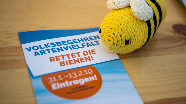 Eine Wollbiene liegt neben einem Flyer des Volksbegehrens