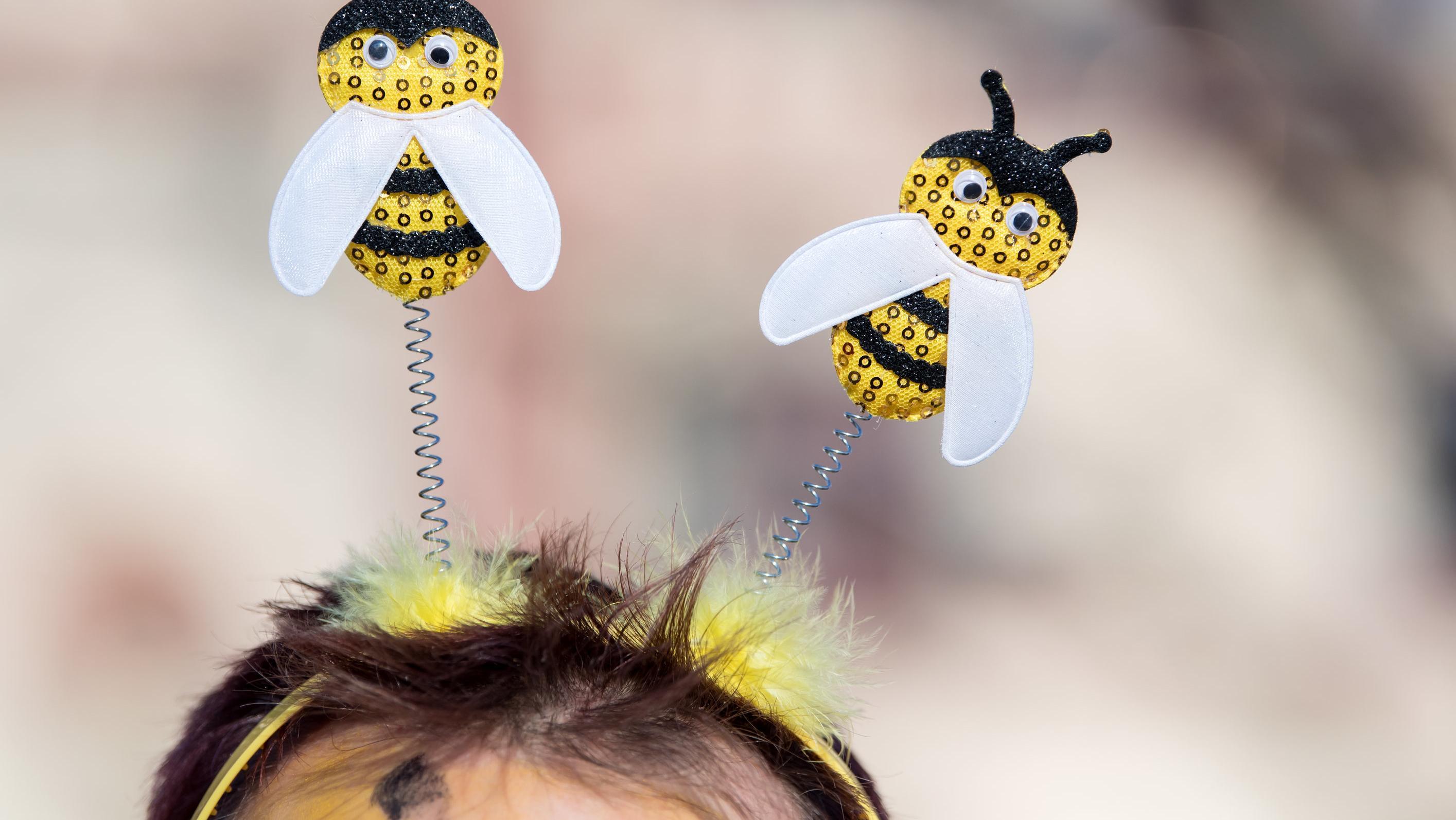 Gebastelte Bienen auf dem Haarreif von Pro-Volksbegehren-Demonstranten am 5. Februar in München.