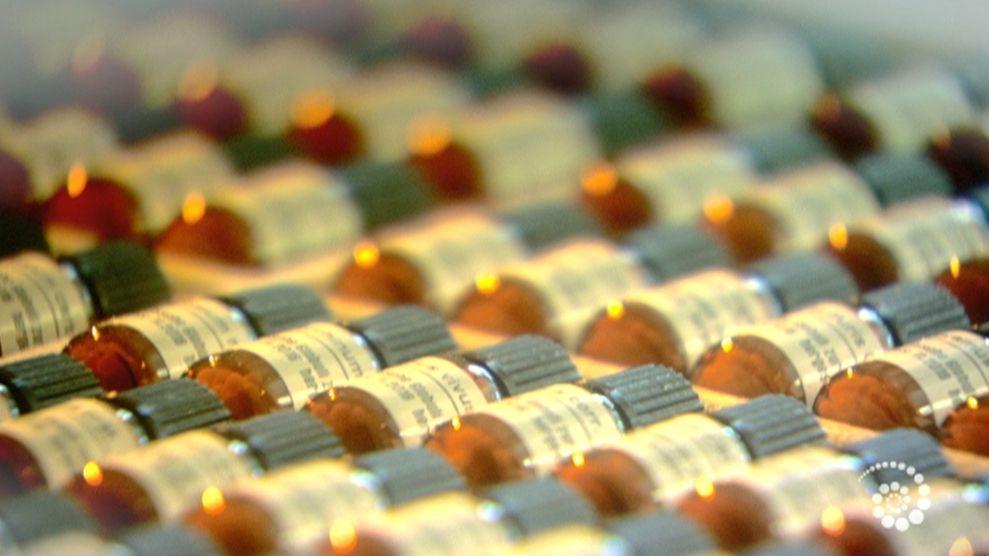 Homöopathische Arzneien liegen in Fläschchen nebeneinander