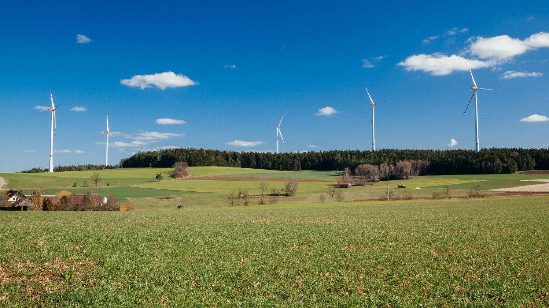 Fünf Windräder in der Oberpfalz stehen in der Landschaft.