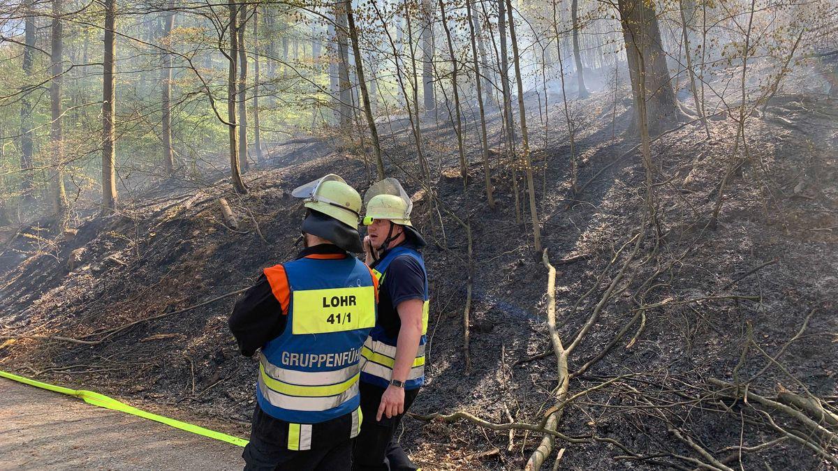 Waldbrand zwischen Lohr am Main und Partenstein