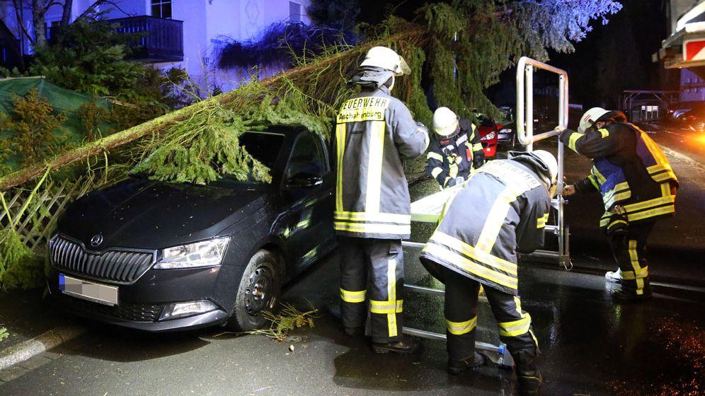 Die Feuerwehr in Aschaffenburg räumt einen umgestürzten Baum von einem Auto.