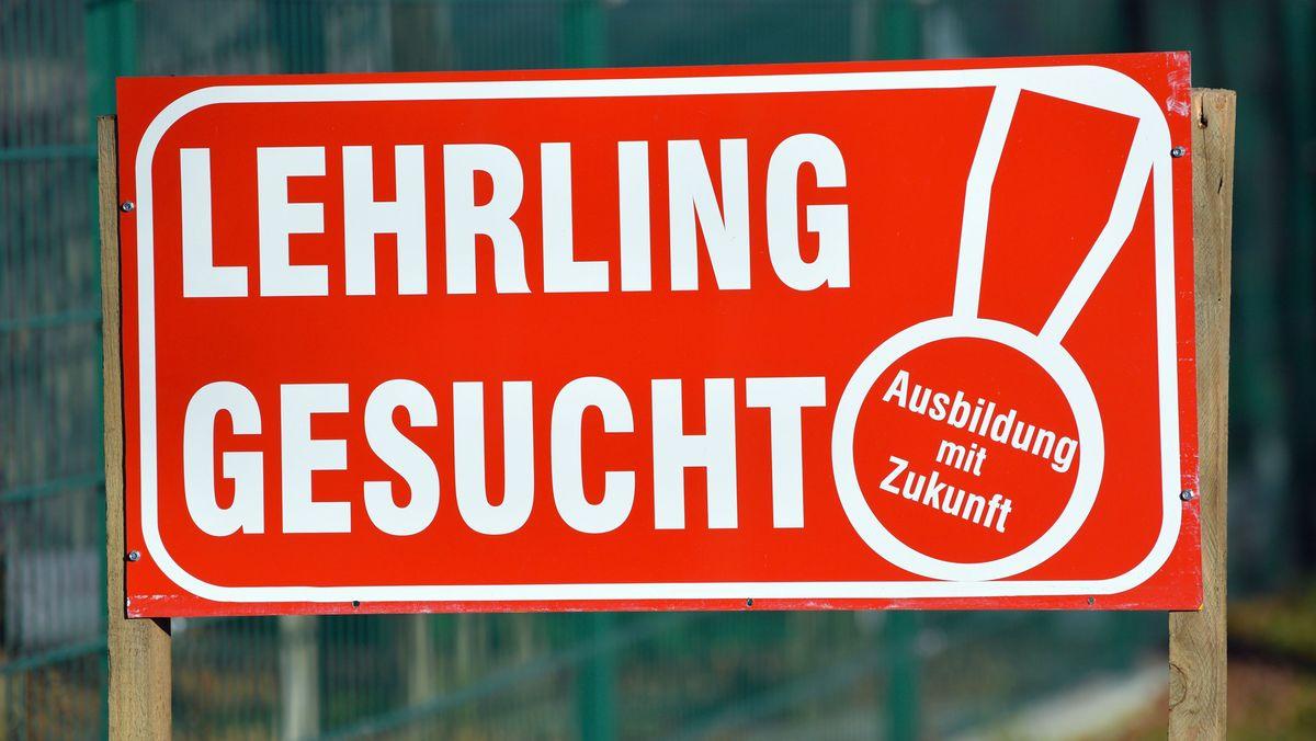 """Ein Schild mit der Aufschrift """"Lehrling gesucht Ausbildung mit Zukunft"""" ist vor einem Zaun eines Betriebes aufgestellt."""