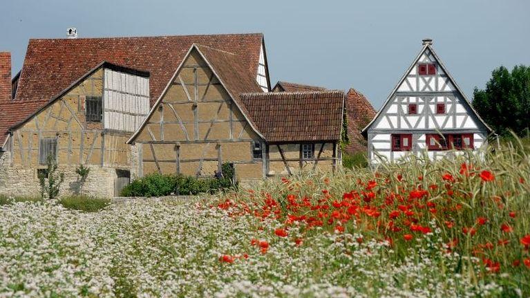 Über 100 Häuser stehen im Freilandmuseum.