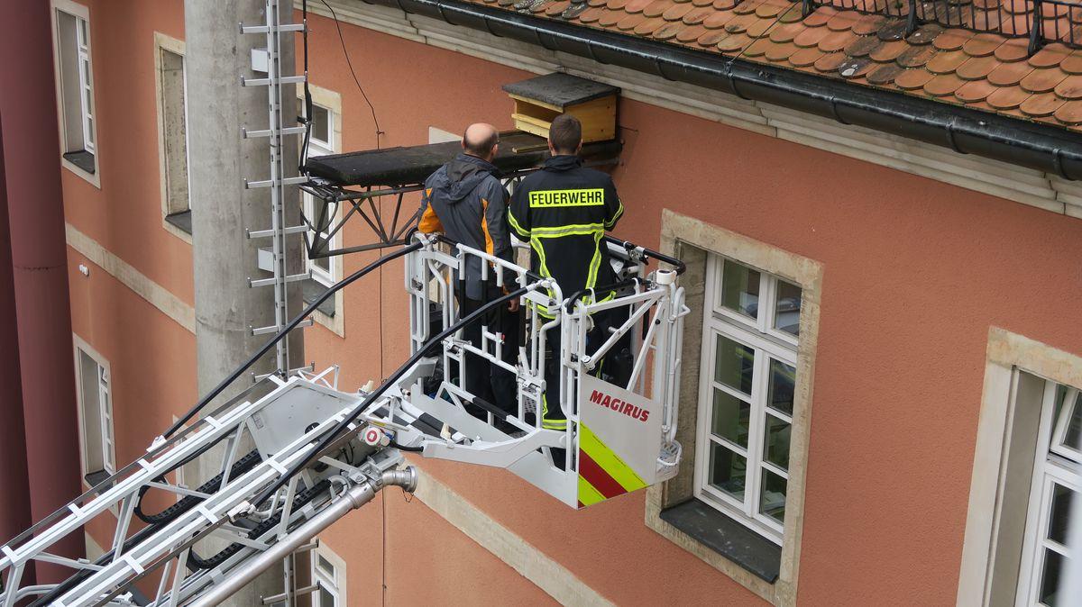Ein Feuerwehrmann steht auf einer Drehleiter unterhalb eines Hausdaches.