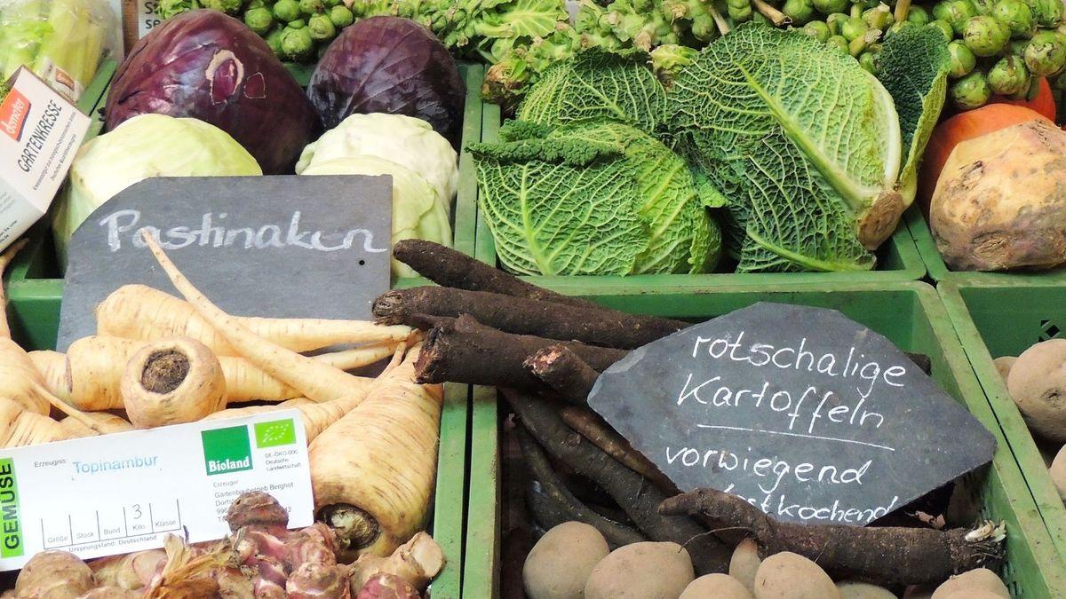 Wirsing, Kohlrabi, Kartoffeln, Kohl und Rettich liegen in grünen Kisten, die auf einem Marktstand aufgebaut sind.