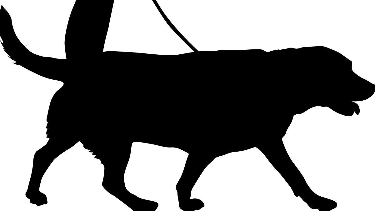 Zeichnung: Hund beim Gassi gehen
