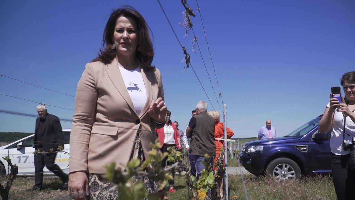 Landwirtschaftsministerin Michaela Kaniber (CSU) informiert sich über Frostschäden in den Weinbergen an der Mainschleife.