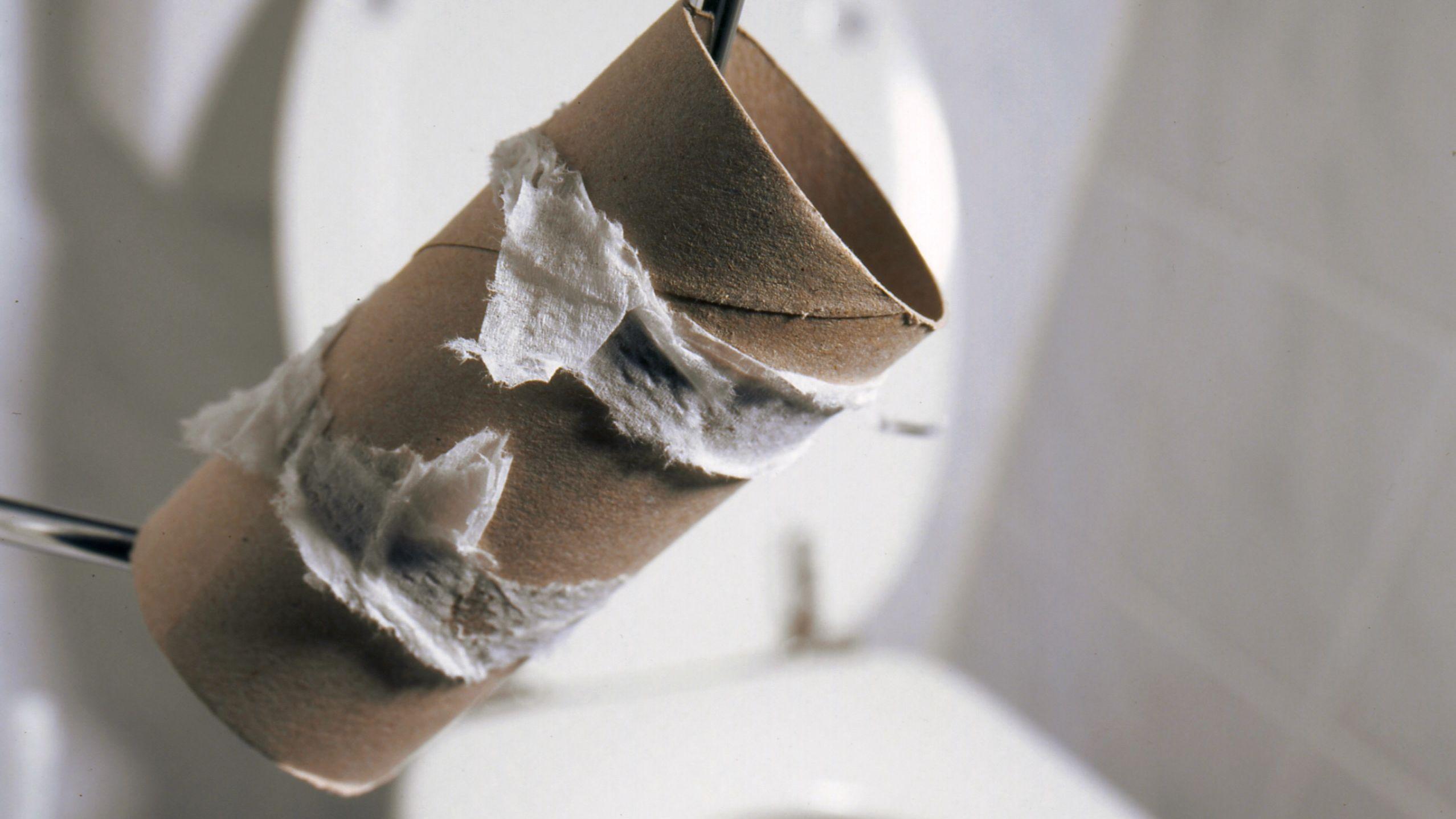 Verbrauchte Toilettenpapier-Rolle neben einer Toilette.