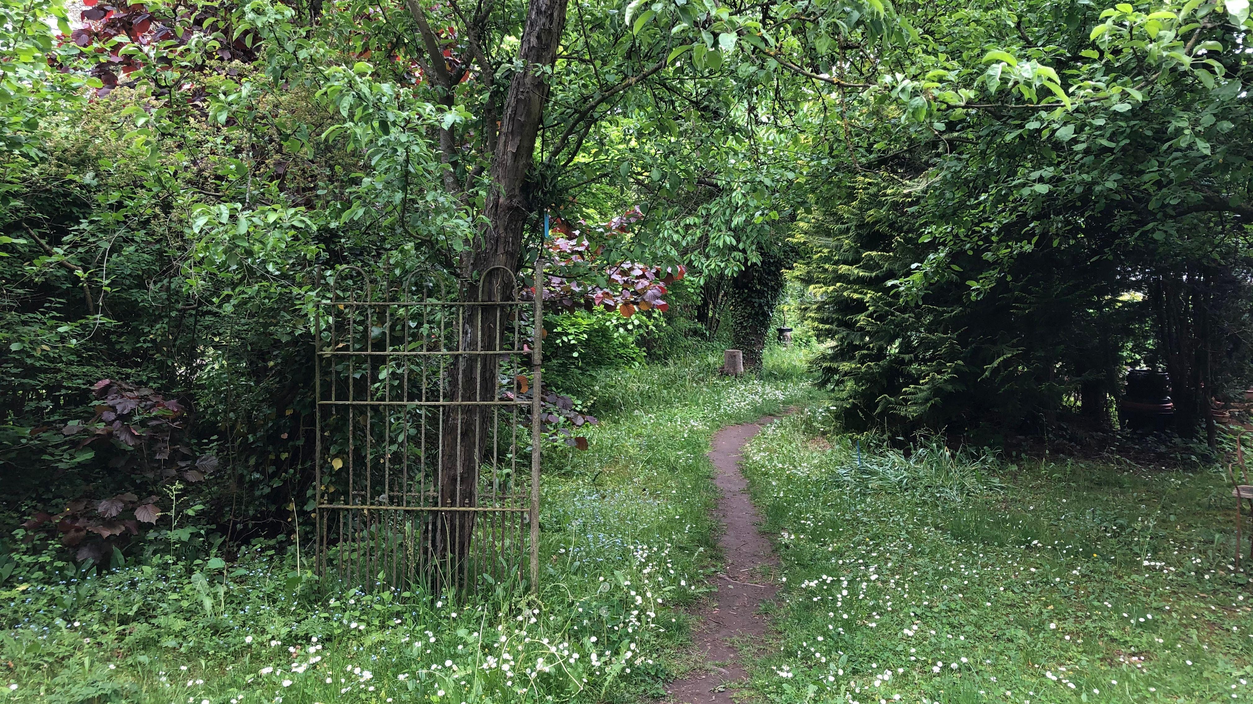 Verwunschene Wege im naturnahen Garten