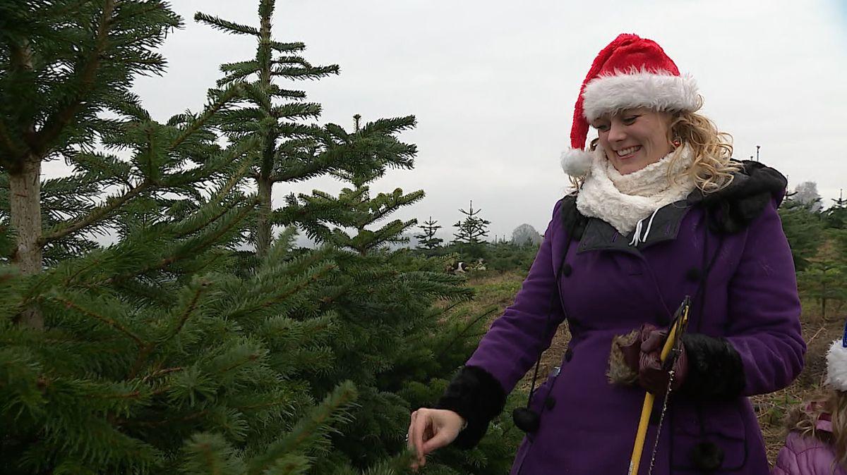 Frau beim Christbaumkauf