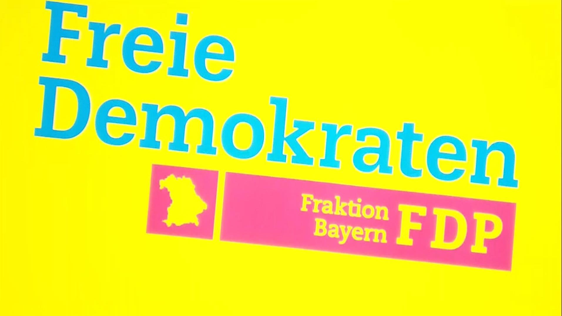 FDP-Winterklausur: Aufgabenverteilung und Aussprache