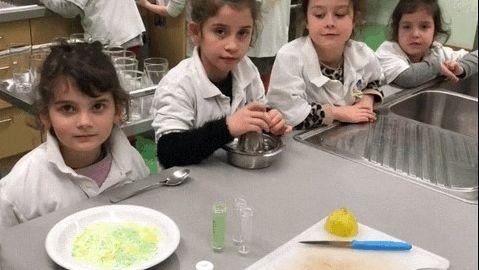 Kinder schnippeln Gemüse - und lernen nebenbei neue Sorten kennen.