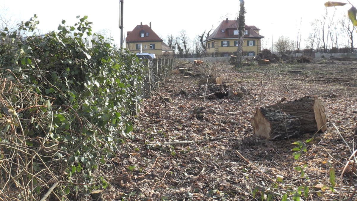 Das abgeholzte Grundstück an der Töginger Strasse in Mühldorf