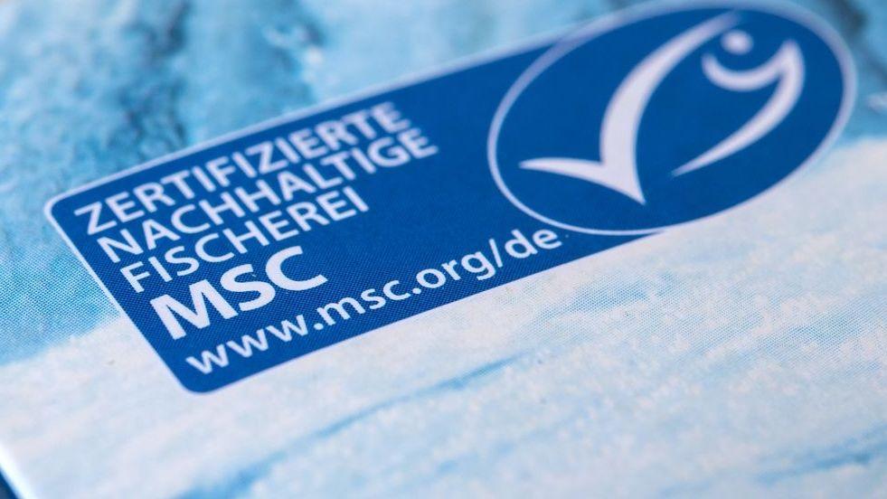 MSC Siegel - Was ist dran an der Kritik?