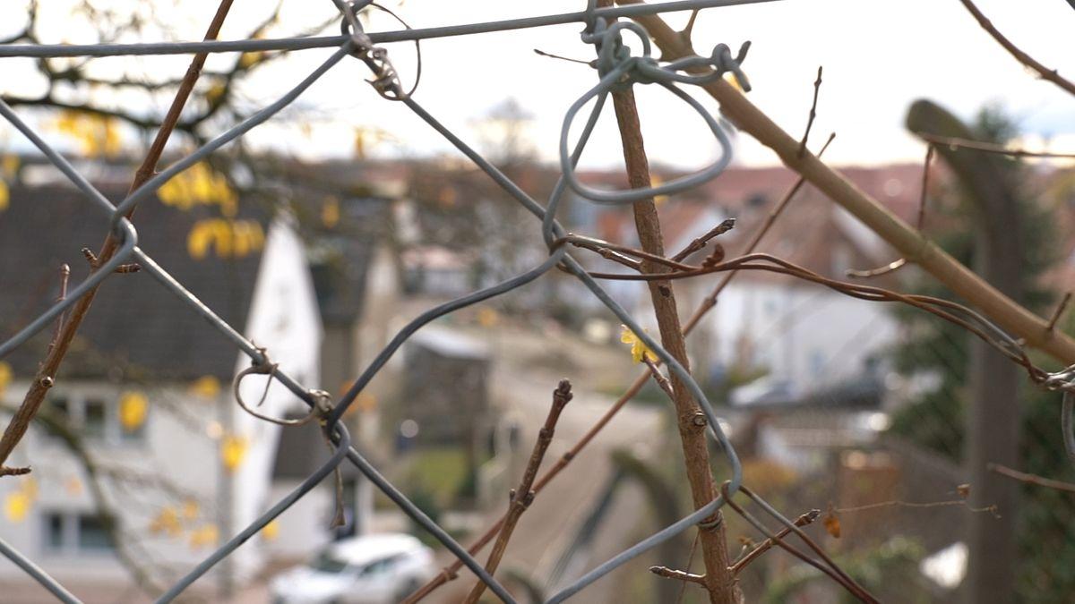 Blick auf Dillinger Wohnviertel/Symbolbild
