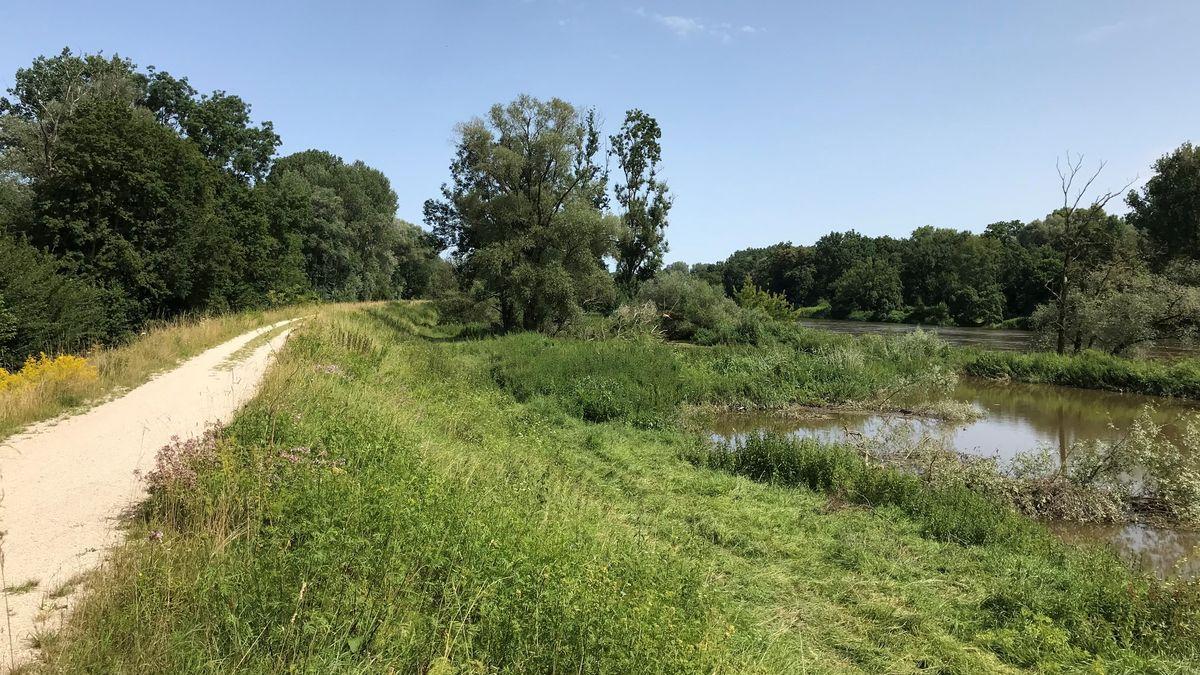 Donau-Flutpolder Bertoldsheim