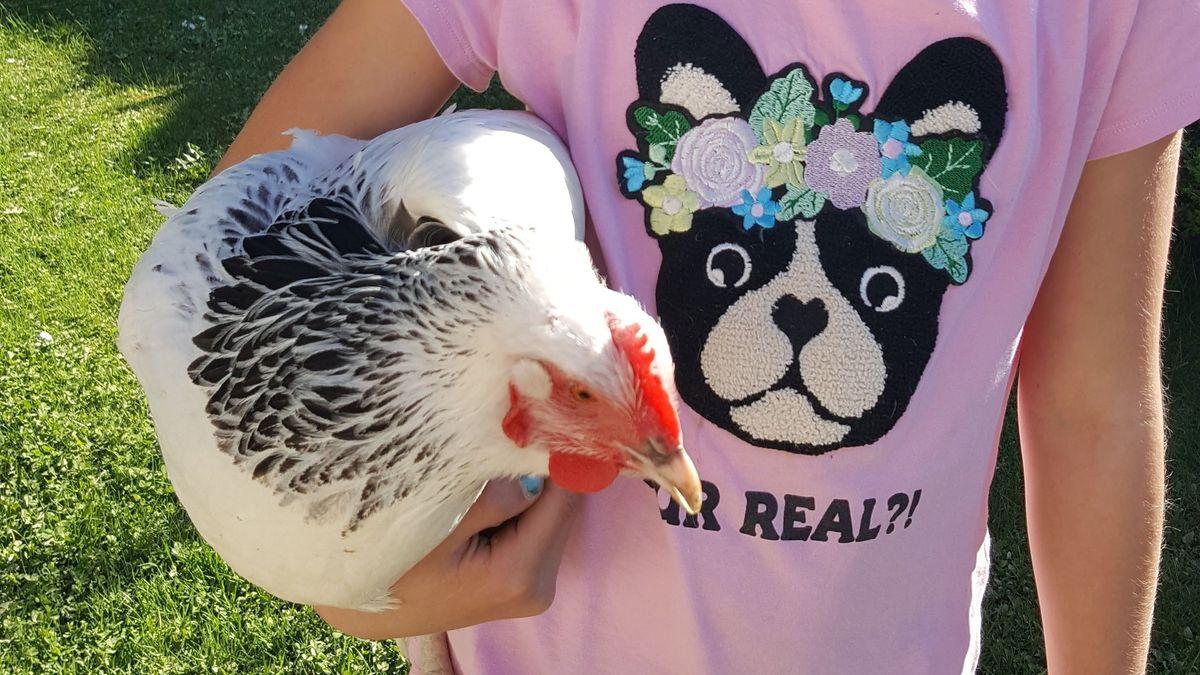 Mädchen mit Huhn in Arm