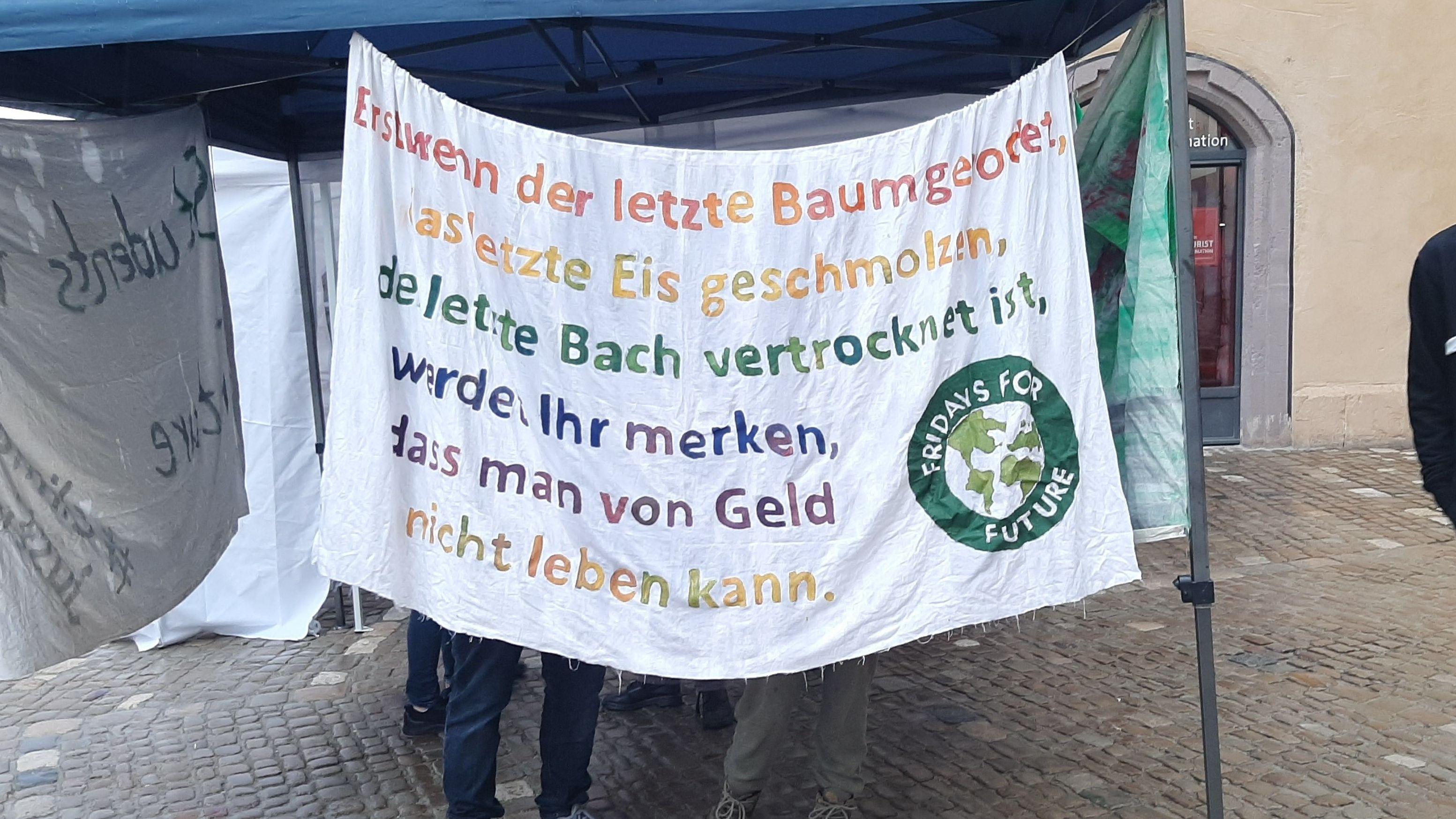 Fridays for Future-Demo in Regensburg