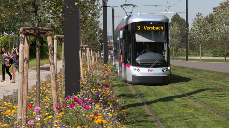 Stadtrat Würzburg beschließt Machbarkeitsstudie für Straba-Linie.